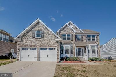 Millsboro Single Family Home For Sale: 25175 Lumberton Drive