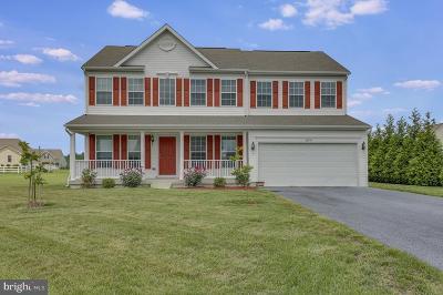 Millsboro Single Family Home For Sale: 24794 Shoreline Drive