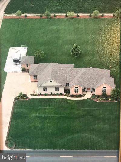 Laurel Single Family Home For Sale: 32568 Mount Pleasant Road