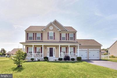 Millsboro Single Family Home For Sale: 24782 Shoreline Drive