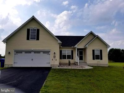 Sussex County Single Family Home For Sale: 28465 Cedar Ridge Drive