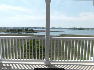 Ocean View Townhouse For Sale: 30165 Jump Lane #501