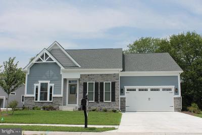 Lewes DE Single Family Home For Sale: $419,485