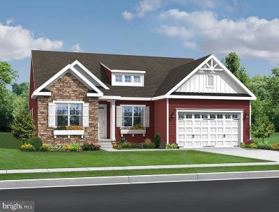 Millsboro Single Family Home For Sale: 30169 Piping Plover
