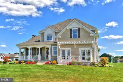 Millsboro Single Family Home For Sale: 30203 Piping Plover Drive