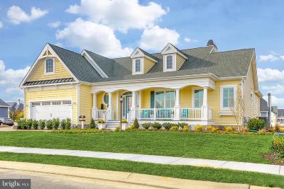 Millsboro Single Family Home For Sale: 29862 Little Heron Court
