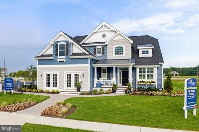 Millsboro Single Family Home For Sale: 30223 Piping Plover Drive