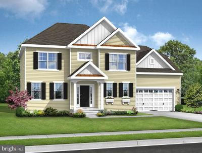 Millsboro Single Family Home For Sale: 30196 Piping Plover Drive