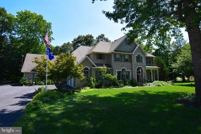 Seaford Single Family Home For Sale: 26899 Malihorn Drive