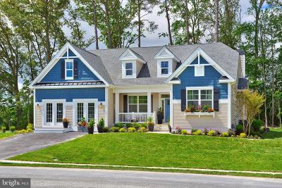 Millsboro Single Family Home For Sale: 24010 Benjamin Harrison Circle