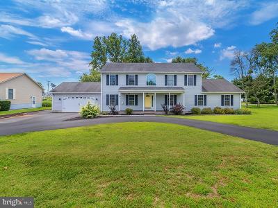 Millsboro Single Family Home For Sale: 200 Millstone Lane