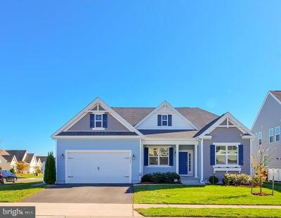 Millsboro Single Family Home For Sale: 33882 Sea Otter Way