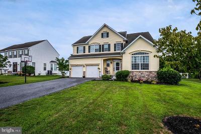 Milford Single Family Home For Sale: 3 E Bullrush Drive