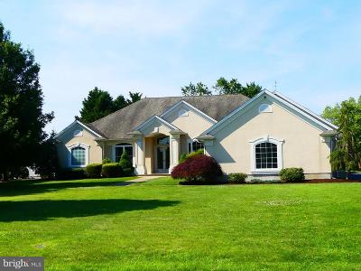 Sussex County Single Family Home For Sale: 303 Fields Landing