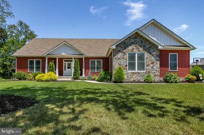 Millsboro Single Family Home For Sale: 52 Beacon Circle
