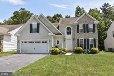 Millsboro Single Family Home For Sale: 32753 Spring Water Drive