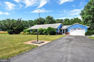 Greenwood Single Family Home For Sale: 14119 Beach Highway