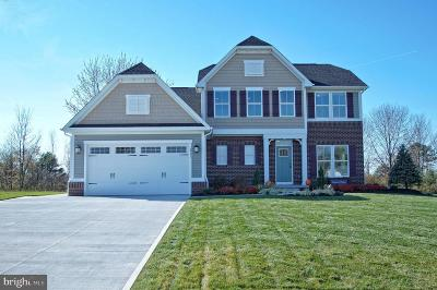 Lewes Single Family Home For Sale: 22425 S Acorn Way