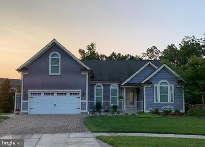Ocean View Single Family Home For Sale: 31028 Waterthrush Lane