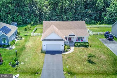 Lewes Single Family Home For Sale: 28751 Valley View Lane