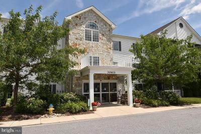 Ocean View Condo For Sale: 30611 Cedar Neck Road #2208
