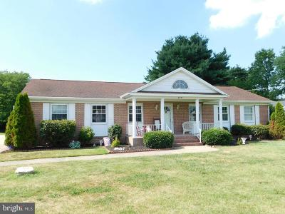 Single Family Home For Sale: 209 Irons Avenue