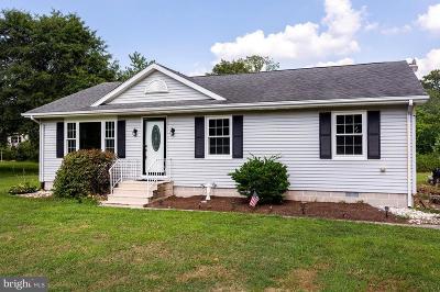Dagsboro DE Single Family Home For Sale: $249,000
