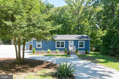 Lewes Single Family Home For Sale: 22755 Camp Arrowhead Road