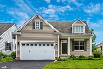 Rehoboth Beach DE Single Family Home For Sale: $469,000