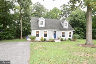 Dagsboro DE Single Family Home For Sale: $240,000