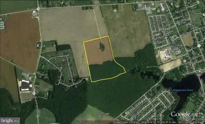Milton Residential Lots & Land For Sale: 14813 Marges Garden Path