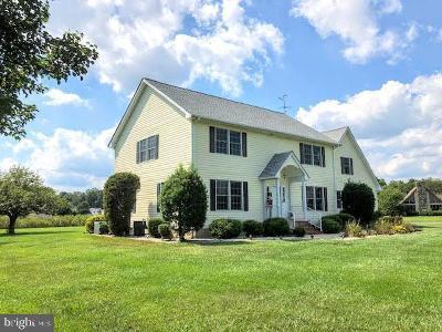 Seaford Single Family Home For Sale: 116 N Paula Lynne Drive