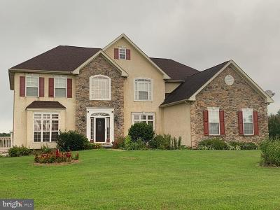 Milford Single Family Home For Sale: 30093 Stage Coach Circle