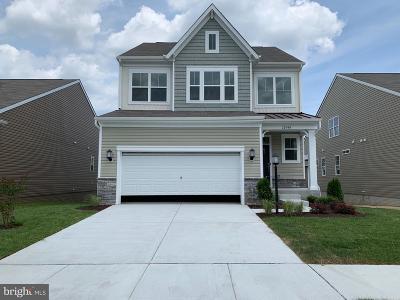 Millsboro Single Family Home For Sale: 32018 Madison St