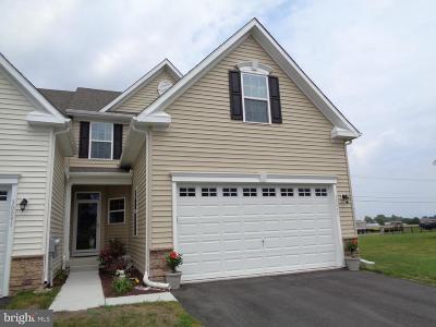 Millsboro Condo For Sale: 30095 Plantation Drive #B46