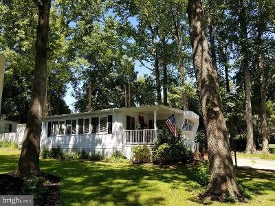 Sussex County Mobile/Manufactured For Sale: 34097 Pinewood Circle Circle #10519