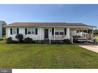 Selbyville Single Family Home For Sale: 38088 Keenwik Road