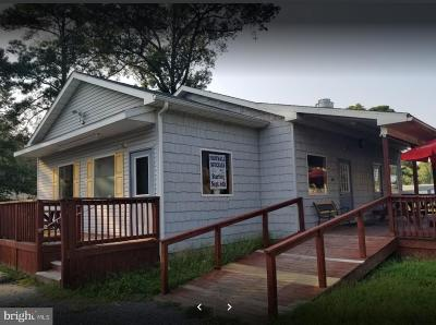Single Family Home For Sale: 26098 John J Williams Highway