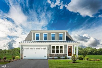 Ocean View Single Family Home For Sale: 37498 Bella Via Way