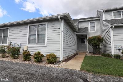 Millsboro DE Condo For Sale: $209,900
