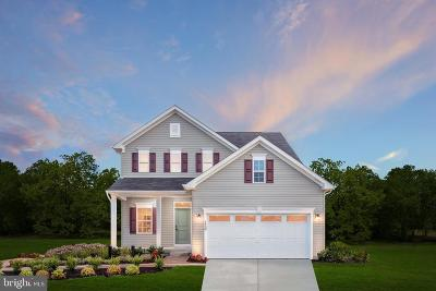 Brooklyn Park Single Family Home Under Contract: 204 Cedar Hill Lane