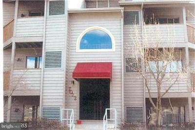 Annapolis Condo For Sale: 7022 Channel Village Court #F, #202