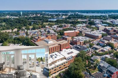 Annapolis Condo For Sale: 141 West Street #207