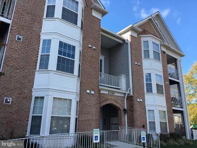 Annapolis MD Condo For Sale: $265,000