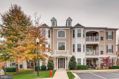 Annapolis Condo For Sale: 1501 Broadneck Place #4-303
