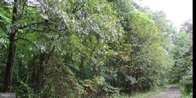 Glen Burnie Residential Lots & Land For Sale: Arundel Avenue