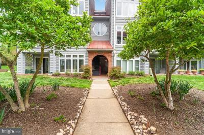 Annapolis Condo For Sale: 1123 Lake Heron Drive #3A