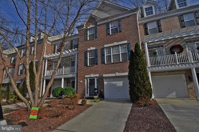 Annapolis Single Family Home For Sale: 229 Wintergull Lane