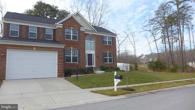 Severn Single Family Home For Sale: 8007 Bush Hill Court
