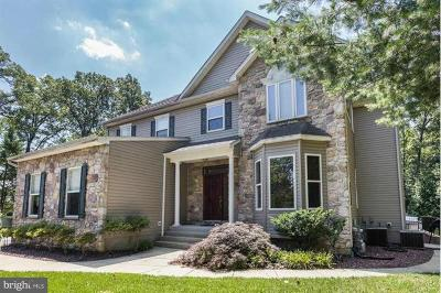 Anne Arundel County Single Family Home For Sale: 307 Unity Lane